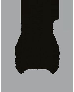 Siegel Wiredscore silber zertifiziert